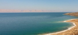 The Living Dead Sea